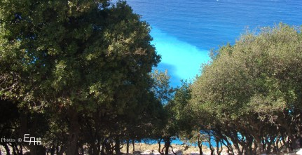 the sea has turquoise colors