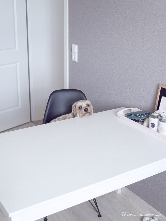 Living: Warum ich mich immer wieder für eine IKEA Küche entscheiden würde! #neuewohnungteil1
