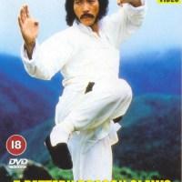 Les 5 Foudroyants de shaolin (雷拳) 1982