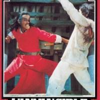 Duel à mort du sorcier chinois (乞食通師) 1982