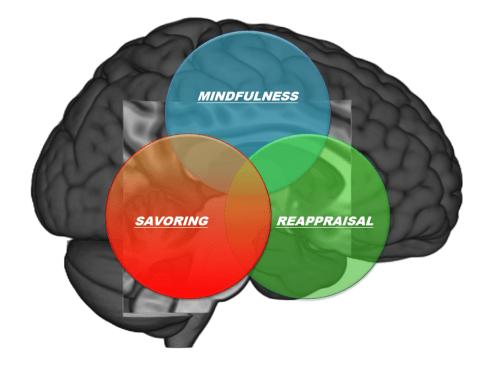 mind-reappraise-savor-brain