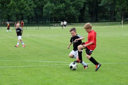 Zwei Sieger aus Dresden beim 4. DSC-Pfingst-Cup