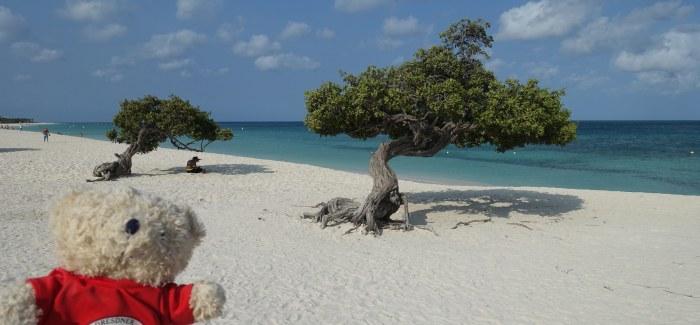 Karibik-Insel Aruba: Eagle Beach