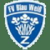 Gegnervorschau: FV Blau-Weiß Zschachwitz