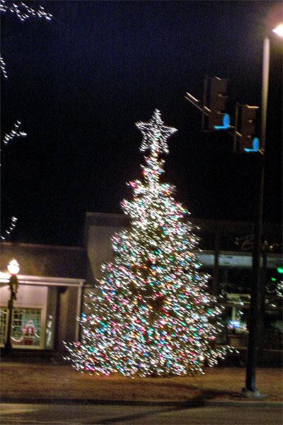 Random Shots A Moving Christmas Tree Dres Ramblings