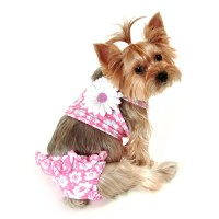 Bathing Suits For Dogs Photo - 1 | Dress The Dog - clothes ...