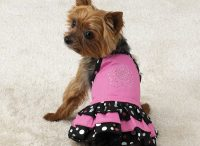 PUPPY SHIRT | Dress The Dog - clothes for your pets!