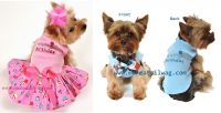 Dog Birthday Outfits Photo