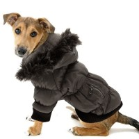 Dog Parkas Photo - 1 | Dress The Dog - clothes for your pets!
