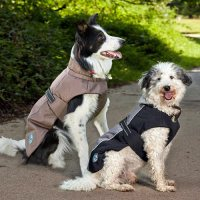 Outdoor Dog Jackets Photo - 1 | Dress The Dog - clothes ...