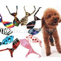 Boy Puppy Clothes | Dress The Dog - clothes for your pets!