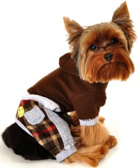 Puppy Clothes For Small Dogs   Dress The Dog - clothes for ...