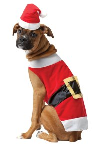 Santa Costume For Dogs | Dress The Dog - clothes for your ...