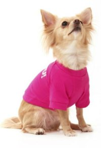 Toy Dog Clothing | Dress The Dog - clothes for your pets!