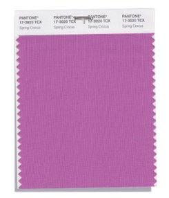 Pantone-Fashion-Color-Trend-Report-New-York-Spring-2018-Swatch-Spring-Crocus