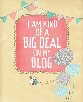 i-am-kind-of-a-big-deal-on-my-blog