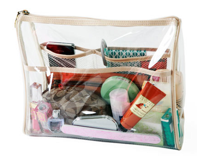 purse-organizer-clear