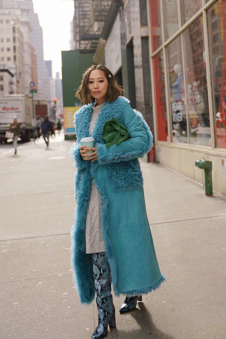 Aimee_song_of_style_blue_Shearling_coat_paris_texas_blue_snakeskins_knee_high_boots_tibi_green_bagArtboard-2.jpg