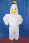 Donald-duck1