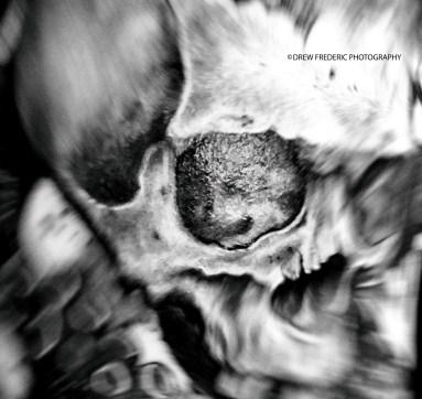 Skull_Tatt_IMG_7642 (2)