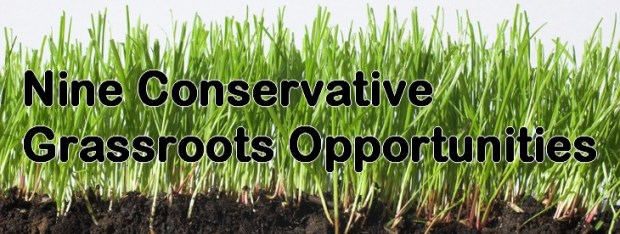 grassroots opportunities