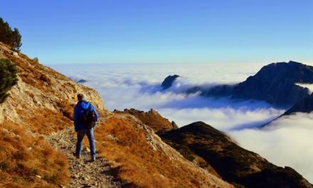 Young Gun 9:  Climbing the Mountain
