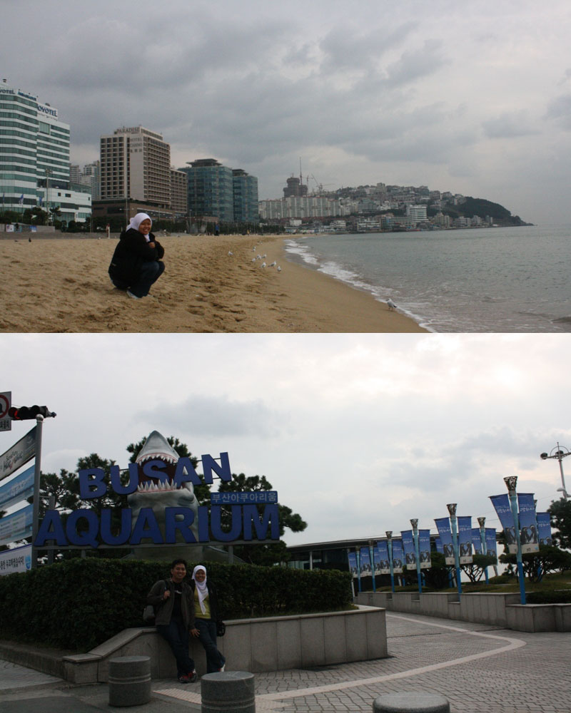 Honeymoon Backpack To South Korea 2 Drew S Days