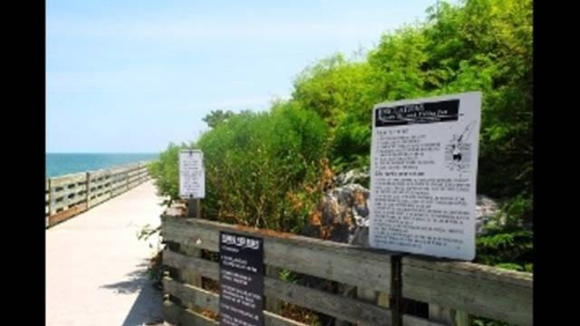 Port Canaveral agrees to buy county's land at Jetty Park