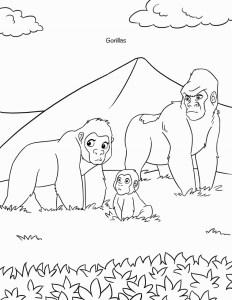 Sheba coloring book Rwanda