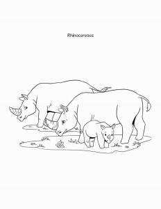 Sheba coloring book rhino