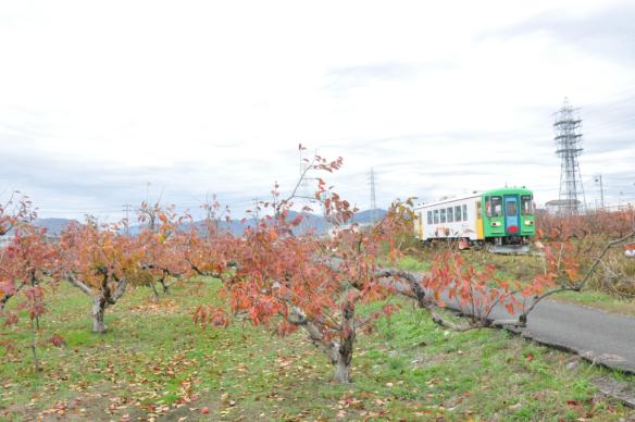 樽見鉄道DSC_6683