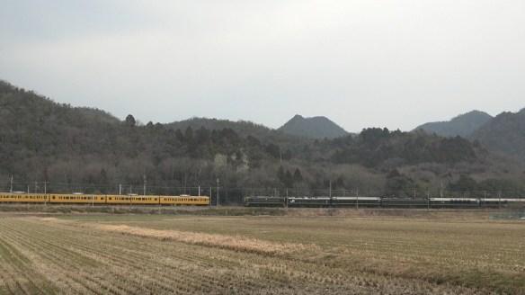 黄色い電車とのツーショット!
