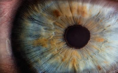 Can EMDR Change Your Brain?