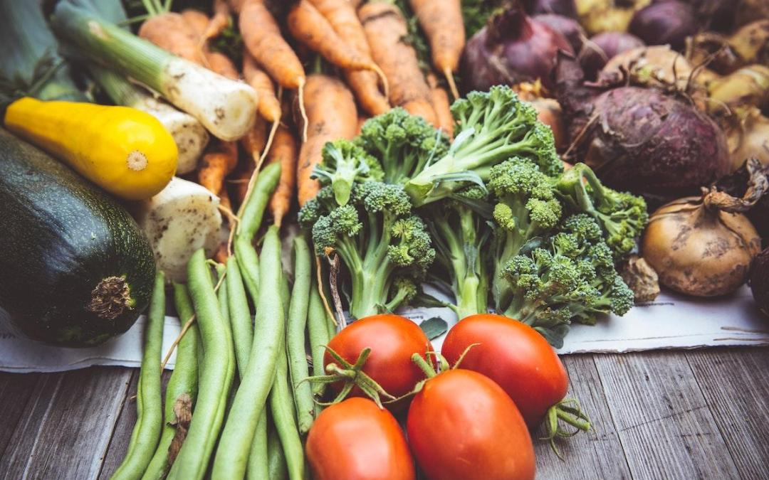 Why I am a Pegan – or Paleo-Vegan – and Why You Should Be Too!