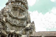 Cambodia 2015 LowRes-71