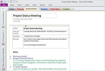 Screenshot: Microsoft OneNote 2010