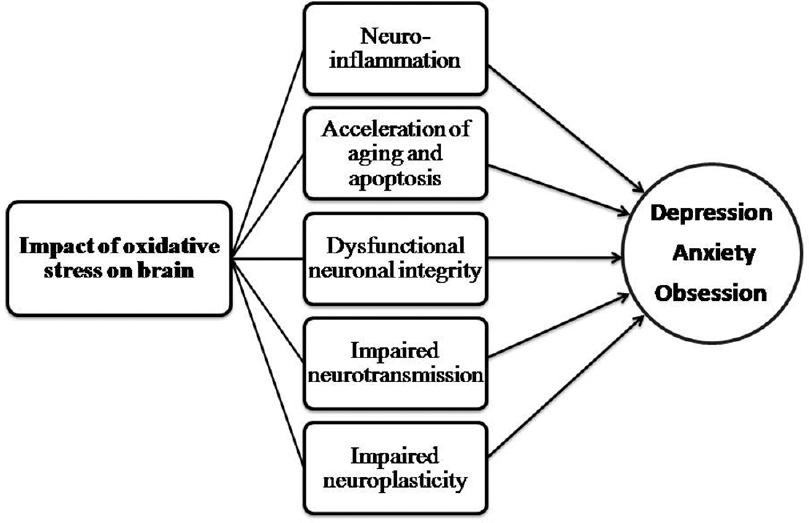 dementia pathophysiology diagram