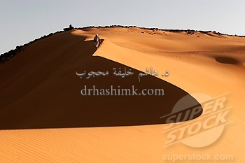 The dunes in the Dongola desert
