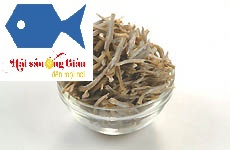 Where to buy dried anchovy in Vietnam, buy cheap dried anchovy