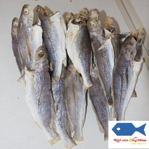 1 sun-dried croaker prestige, quality, safety and hygiene of food
