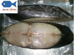 mackerel a cheap sun