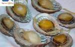 Delicious food processed from the finest dried abalone and quality
