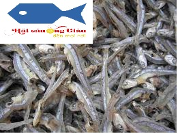 Specializing in providing premium dried anchovies