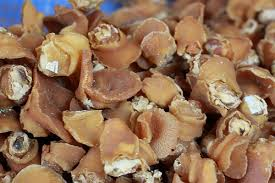 Some dish from dried ablone