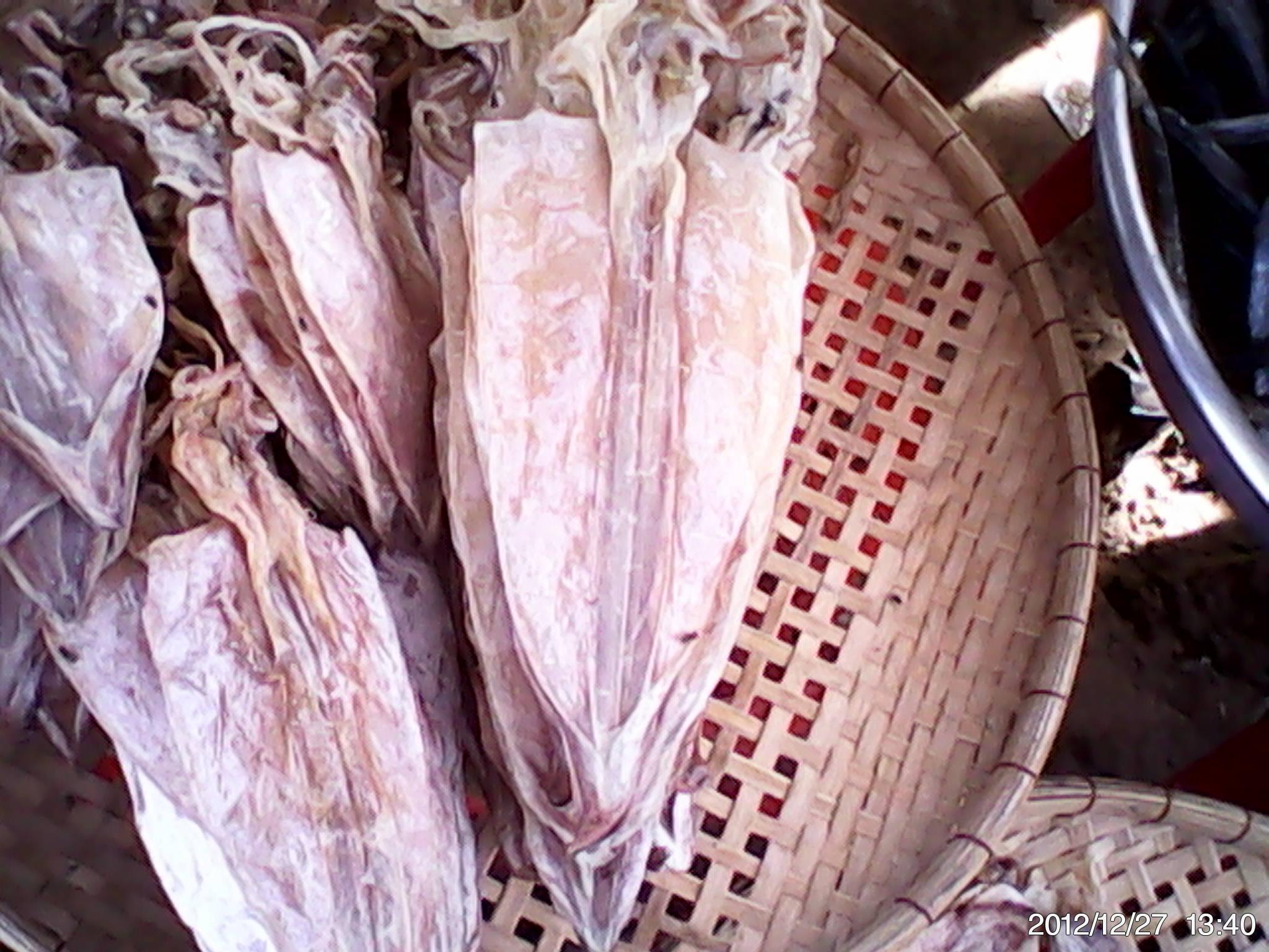Dry squid - sea specialties