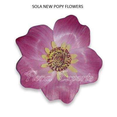 Sola New Popy Flowers-Sola Flowers Suppliers