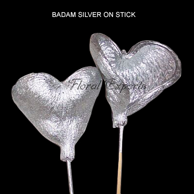Badam Silver on Stem - Christmas Decorations Wholesale