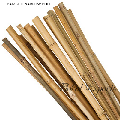 Bamboo Narrow Pole 10' - Tall Bamboo Pole Wholesale