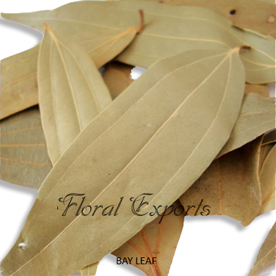 Bay Leaves Natural