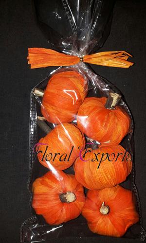 Maize Pumpkin Orange 6pc Bag - Dried Handmade Decorations